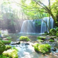 """【九州】""""涼""""と""""癒し""""を求めて…《熊本・福岡・鹿児島・大分》の滝を見に出かけよう"""