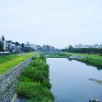 歩いて&自転車で巡りたい!大切なものと出会える、『金沢~犀川沿い』ひとり旅計画