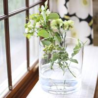 花のある暮らしを涼やかに。夏の「切り花」の楽しみ方、お手入れ&長持ちのコツ