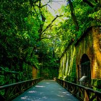 ジブリの世界観が広がる無人島「猿島」&横須賀の街を巡るフォトジェニックな1日♪
