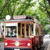 のんびり巡ってみよう。【杜の都 仙台】地元民おすすめの観光・お散歩スポット