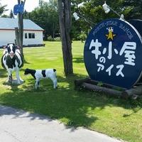 牧場や畑から、そのままの美味しさ!北海道【生産者直営】のスイーツ店9選♪