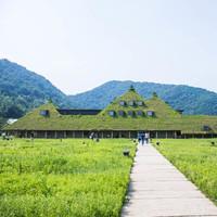 【滋賀県】自然と歴史を愉しむ観光地案内~名所・穴場スポット 湖北から湖南まで~