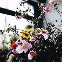 こっくりとした秋色を添えて。心地よい暮らしによりそう「花あしらい」のヒント