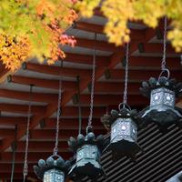 【その先の奈良へ】旅してみませんか~古代から現代へ歴史と魅力を紡ぐまち5選