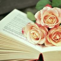 平成最後の、読書の秋に。『美しい生き方』を見つめさせてくれる珠玉の本5選