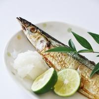 旬の【秋刀魚】を美味しく食べるには?調理器具とお皿でワンランク上の食卓に