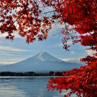 富士山と紅葉と星空と。感動いっぱいの《山梨・富士五湖方面》への秋のお出かけ