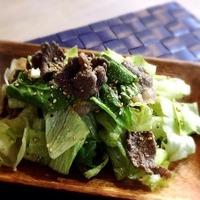さっぱり美味しいだけじゃない!箸が止まらなくなる『チョレギサラダ』レシピ集