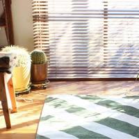 『ブラインドカーテン』でテイストに合わせた、美しい窓辺作りをしませんか?