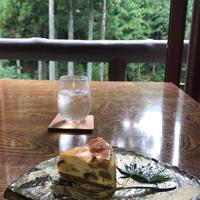 ランチやお茶をしながら森林浴♪【奥多摩】森の中にあるカフェ&レストラン