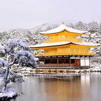 """寒いからこそ美しい。冬に訪れたい""""京都の名所&近郊カフェ""""《冬の旅支度ガイド付き》"""