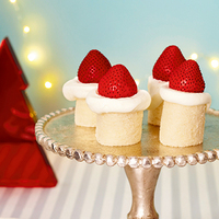 今年はおうちで作ろう!クリスマスケーキ&伝統菓子【とっておきレシピ30選】お手軽~本格派まで*
