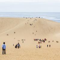 一度は訪れたい絶景スポット【鳥取砂丘】おすすめ観光地&ランチ情報