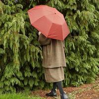 チェックを主役に*Traditional Weatherwearの小物で楽しむトラッドスタイル