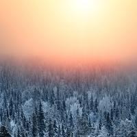 寒くても幸せな気持ちに…『フィンランドの暮らし』に学ぶ、冬の過ごし方