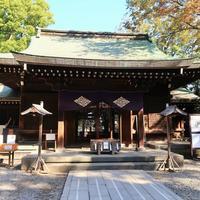 縁結びの名所!「川越氷川神社」のアクセス&観光ガイド~周辺ランチ情報付き