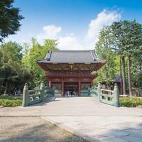 つつじや鳥居など見所満載の『根津神社』でお参りしよう!アクセス&ランチ情報付き