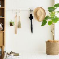 グリーンの力で清々しい「玄関」に♪風水にも◎な観葉植物とおしゃれな飾り方