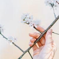"""始めるなら""""春""""がおすすめ。ココロとカラダを整える《暮らしのメソッド》"""