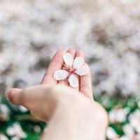 芽吹きの季節に合わたせた『養生ライフ』を始めよう!春の養生法4つのススメ。