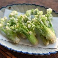 ほろ苦い春の味。天ぷら、パスタ…「タラの芽」堪能レシピ16品
