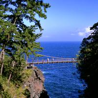 スリル満点の吊り橋に、美しい景色【城ヶ崎海岸】の観光スポット&ランチ情報