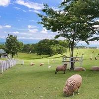 天気が良い日のお出かけは♪【那須高原】おすすめ観光スポット・グルメ情報