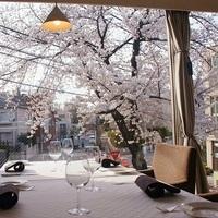 お花見ランチ&ディナーが楽しめる東京の桜カフェ&レストラン8選