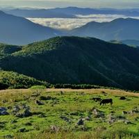 一度は訪れたい日本の絶景【四国カルスト】でドライブとキャンプを楽しむ