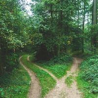 """道に迷ったら手繰り寄せればいい。自分の人生を貫く""""1本""""の「糸」を探そう!"""