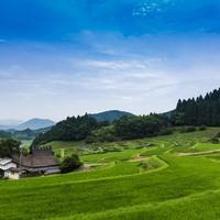 里山と水田が織りなす風景に魅せられて【日本の棚田百選/近畿地方編】