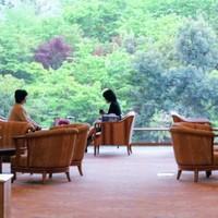 春夏秋冬、どの観光地がおすすめ?「新潟」を楽しみ尽くす9つのモデルコース