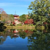 京都嵯峨野奥地に佇む平安時代の離宮…嵐山から少し足を延ばし、大覚寺を訪れませんか?