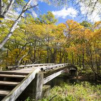 爽やかな空気に包まれながらハイキングを楽しみませんか…関東地方のハイキングスポット6選