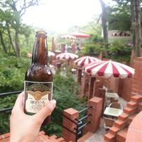 地元民がご案内する《鎌倉の歩きかた》8月篇~美味しいビールで夕涼み~