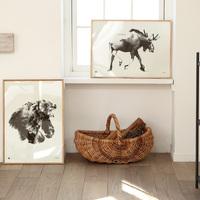 「アート」でつくる素敵空間。『センス良く』飾る5つのポイント