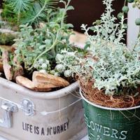 お庭やベランダをもっと素敵に♪「おしゃれガーデニング」のDIYアイデア集