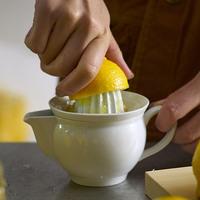 フレッシュな果汁を食卓に【ジューサー】で広がる料理の楽しみ