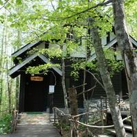 とっておきの北海道旅行へ。【富良野】のおすすめカフェ・ランチスポット