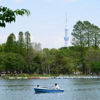 天気の良い日は公園へ!東京で【手漕ぎボート】が楽しめる場所