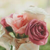 知っていると人生がちょっと豊かになれる。美しき「誕生月の花」辞典