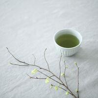 """もっとおいしく、秋の『お茶時間』。上手な""""緑茶の入れ方""""とおすすめ""""茶器・茶葉"""""""