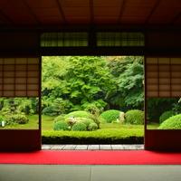 静寂な空間に心癒される。庭園が美しい【京都】の穴場寺院
