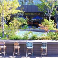 開放的な都会のオアシス。「屋上庭園」でリフレッシュしてみませんか?