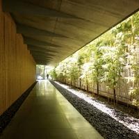 アート鑑賞するように建築を巡ろう。おすすめの「美術館建築」散歩in東京