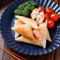 【春巻きを学ぼう】基礎からアレンジまで!美味しく作るヒント&レシピ集