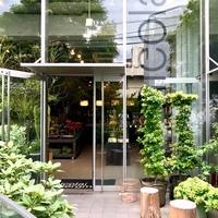 優しい香りに癒される♪東京の《ボタニカルカフェ》5選