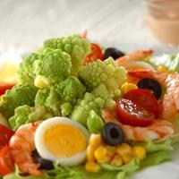 テーブルが華やぐおしゃれな野菜「ロマネスコ」のおもてなし料理レシピ♪
