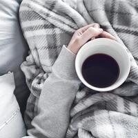 「電気毛布」であったか冬時間*毎日をぽかぽかに包む、おすすめアイテムをご紹介